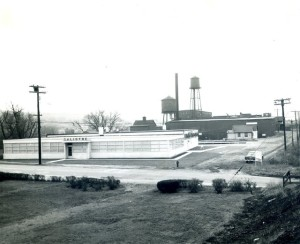 Calidyne Company (120 Cross St) and JO Whitten Factory (134 Cross St) seen from site of Davidson Park